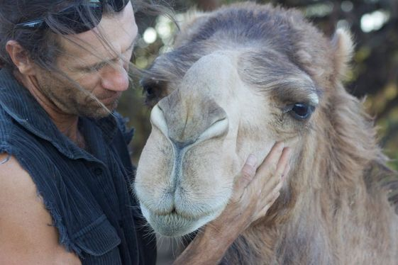 Gill with camel